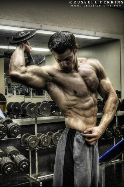 Ripped bodybuilder