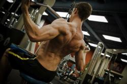 Muscular back matt ferro