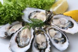 Oysters and testosterone