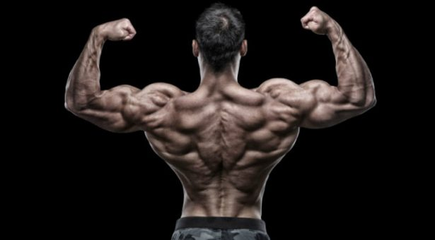 6 Exercises To Build A Huge Back