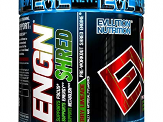 Evlution Nutrition ENGN Shred Review