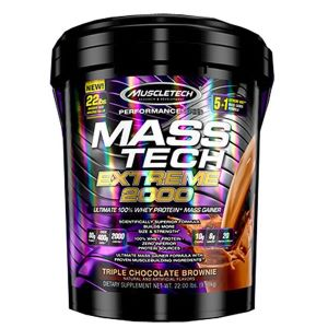 best Protein powders for muscle mass