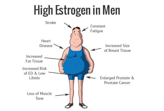 Effects of high Estrogen
