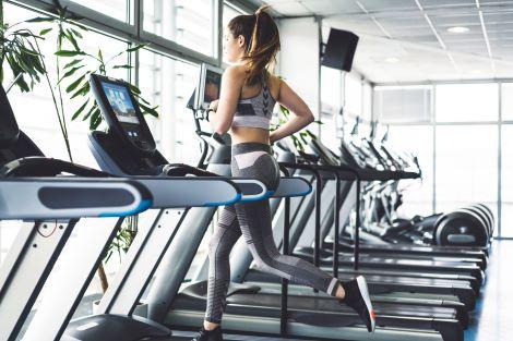 Best High End Treadmills