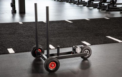 xpo trainer sled