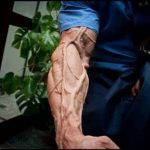 The 10 Best Supplements for Vascularity in 2021