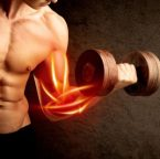 How to Build More Muscle: 6 Muscle Building Tips